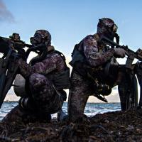 Cele mai eficiente trupe de elita din lume