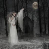 Vraja oaselor sub clar de luna - Editura Corint - {recenzie}